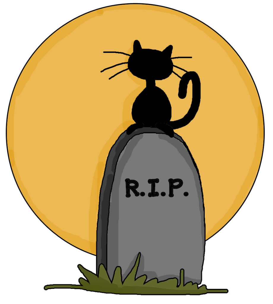 Rip Cat Raunds Town Voice